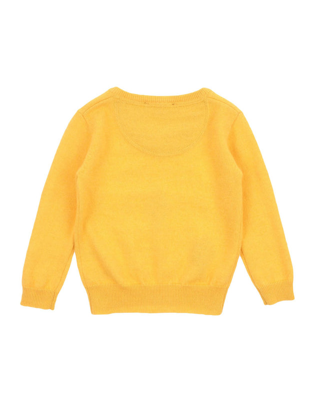 Aston Martin - Baby Boy Wool V-neck Pullover Sweater, Mustard - 3/6M