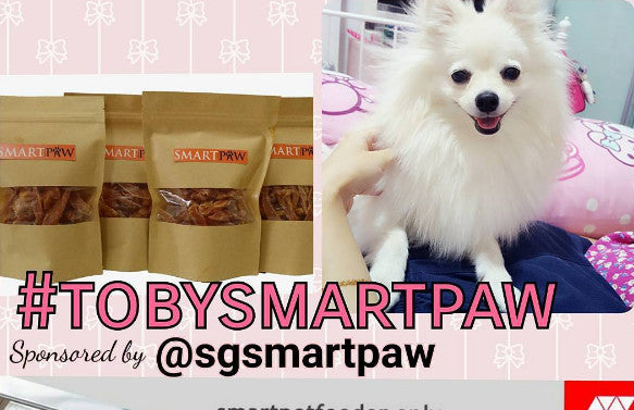 Stand A Chance To Win : SmartPaw Christmas and New Year Giveaway