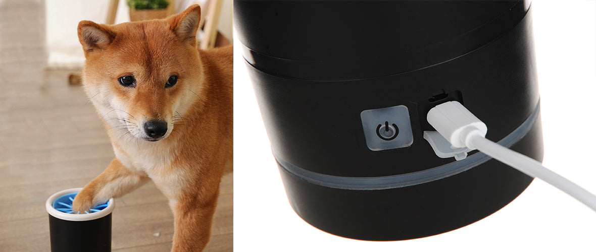 Shiba Inu using Smartpaw dog paw washer