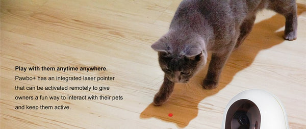 Pawbo Smart Pet Camera Laser Function