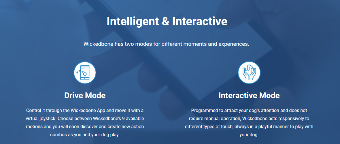 Wickedbone - Smart & Interactive Dog Toy Drive Mode and auto mode