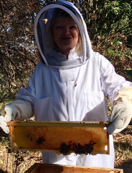 AAA Workshop - Beekeeping for Beginners - ONLINE COURSE - REGISTER YOUR INTEREST NOW