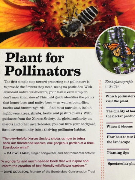 Book - 100 Plants to Feed the Bees: Provide a Healthy Habitat to Help Pollinators Thrive