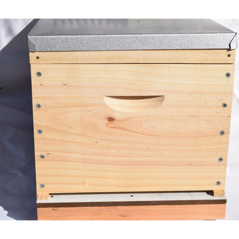 BeeHive Complete & made inc Wax Frames