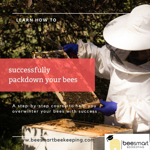 AAA Workshop -Successfully packdown your bees for Winter - ONLINE CLASS
