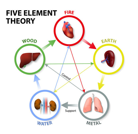 Traditional Chinese Medicine Five Element Theory