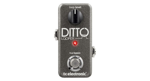 TC Electronic Ditto Looper - Somerset Music