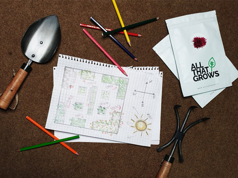 Prepare a layout/sketch of the garden