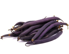 Beans Purple Seeds