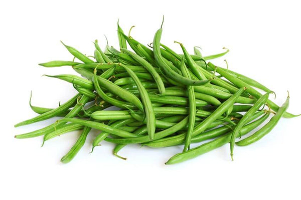 Blue Lake Pole Bean Seeds