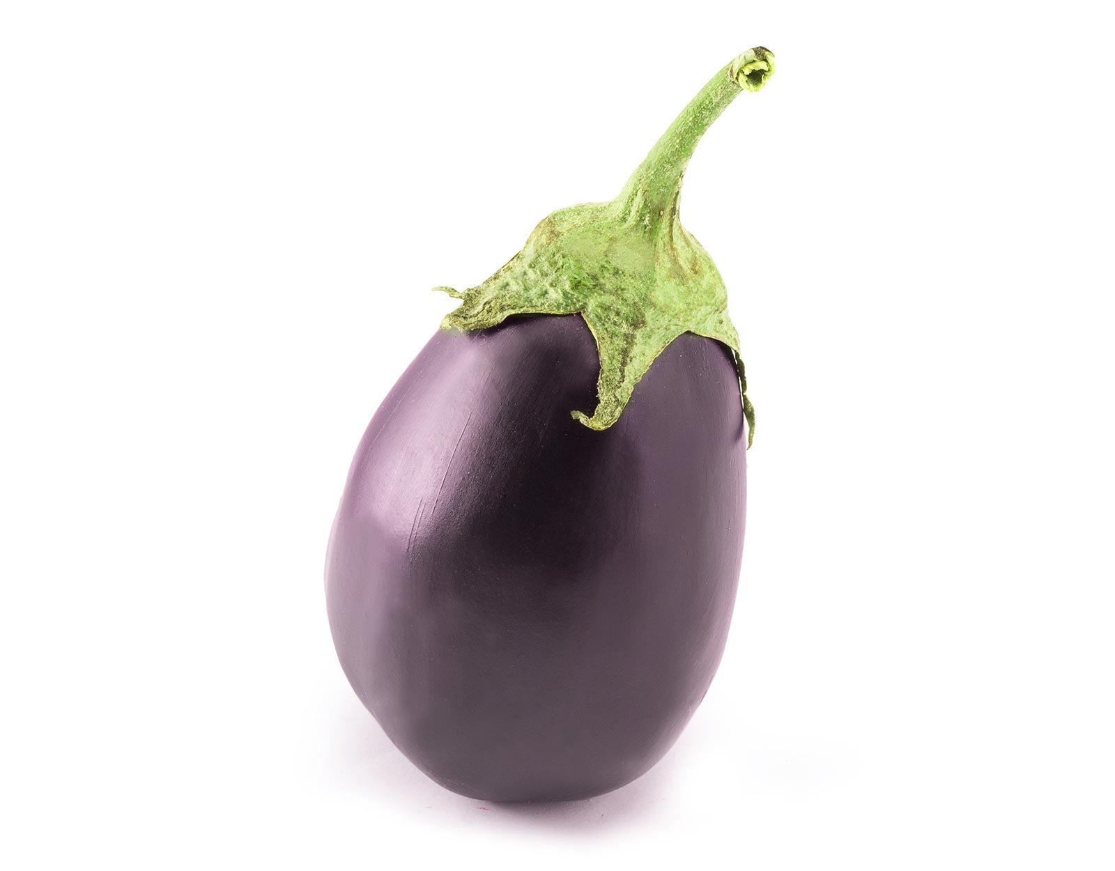 how to grow brinjal at home