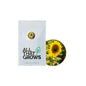 Helianthus Sunflower Sunset Flower Seeds