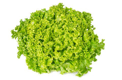 Lettuce Lollo Bionda Seeds