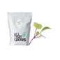 Radish China Rose Microgreen Seeds