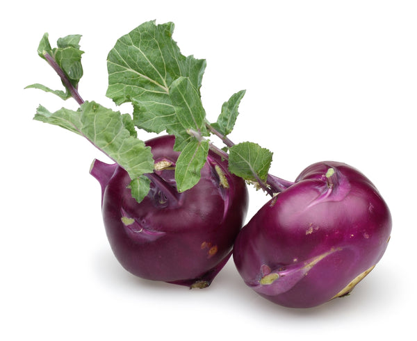 Kohl Rabi Purple Seeds