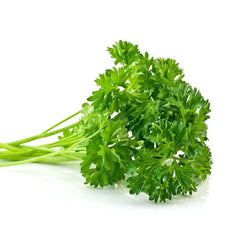 Parsley microgreen seeds