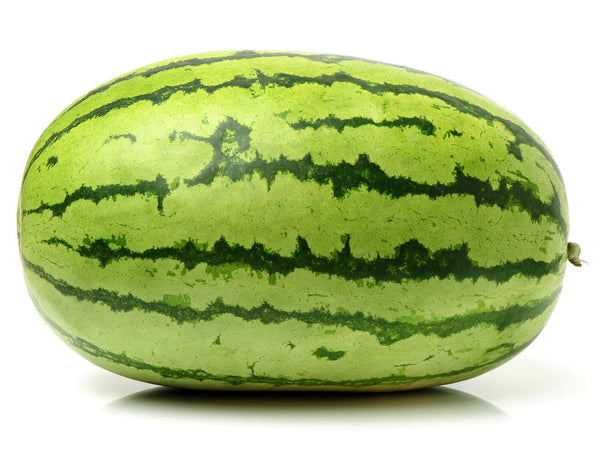 Water Melon Striped Oval