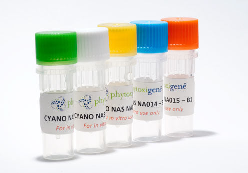 Phytoxigene™ CyanoNAS Nucleic Acid Standards