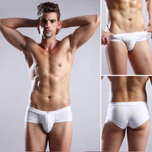 Load image into Gallery viewer, Men Underwear Modal Briefs - Fashion NetClub