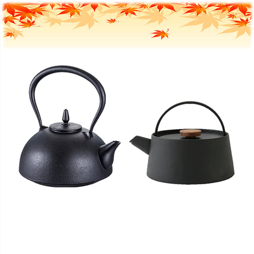TESTUBIN Japanese kettle cast iron tea kettle & pot