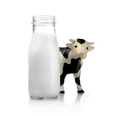 Difference Between UHT and Fresh Milk