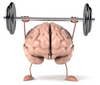 YOUR BRAIN LOVES THE GYM