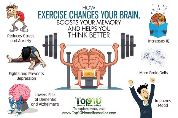 TTN Palawan Inc - How exercise changes your brain