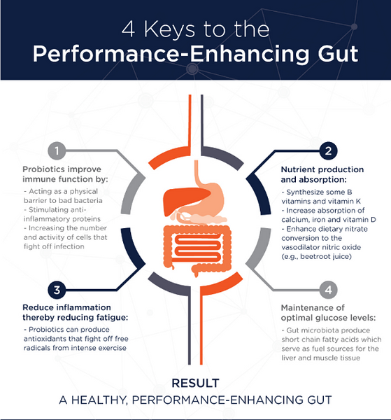 TTN Palawan Inc -- Probiotics for Performance-Enhancing Gut