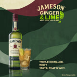 JAMESON - Irish Whiskey (40% alc/vol)