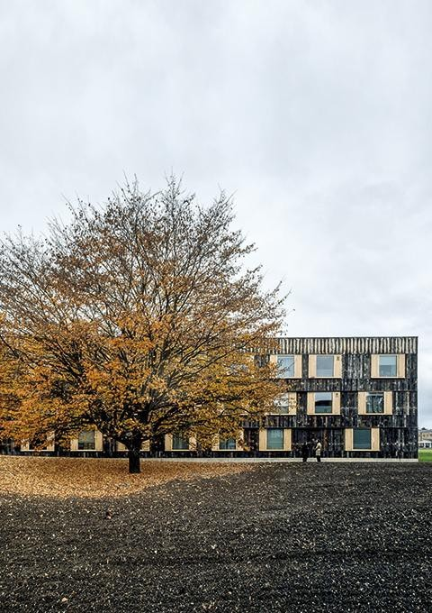 6a architects - Cowan Court en Churchill College