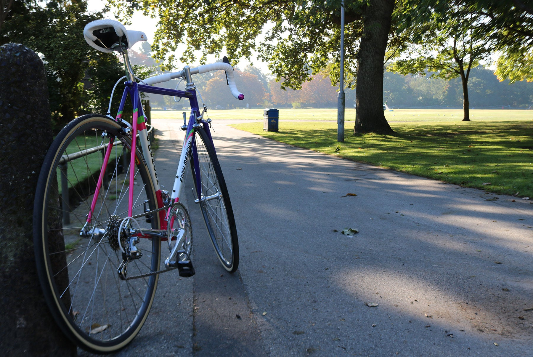 Eddy Merckx Corsa Extra SLX frame in Team Weinmann colours at Poole Park's cricket pitch.