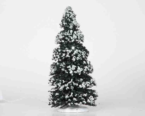 Evergreen Tree, medium