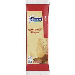 PÂTURAGES Emmental FROZEN