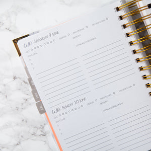 2018 - 19 ACADEMIC / MID YEAR Daily Planner: CARRARA
