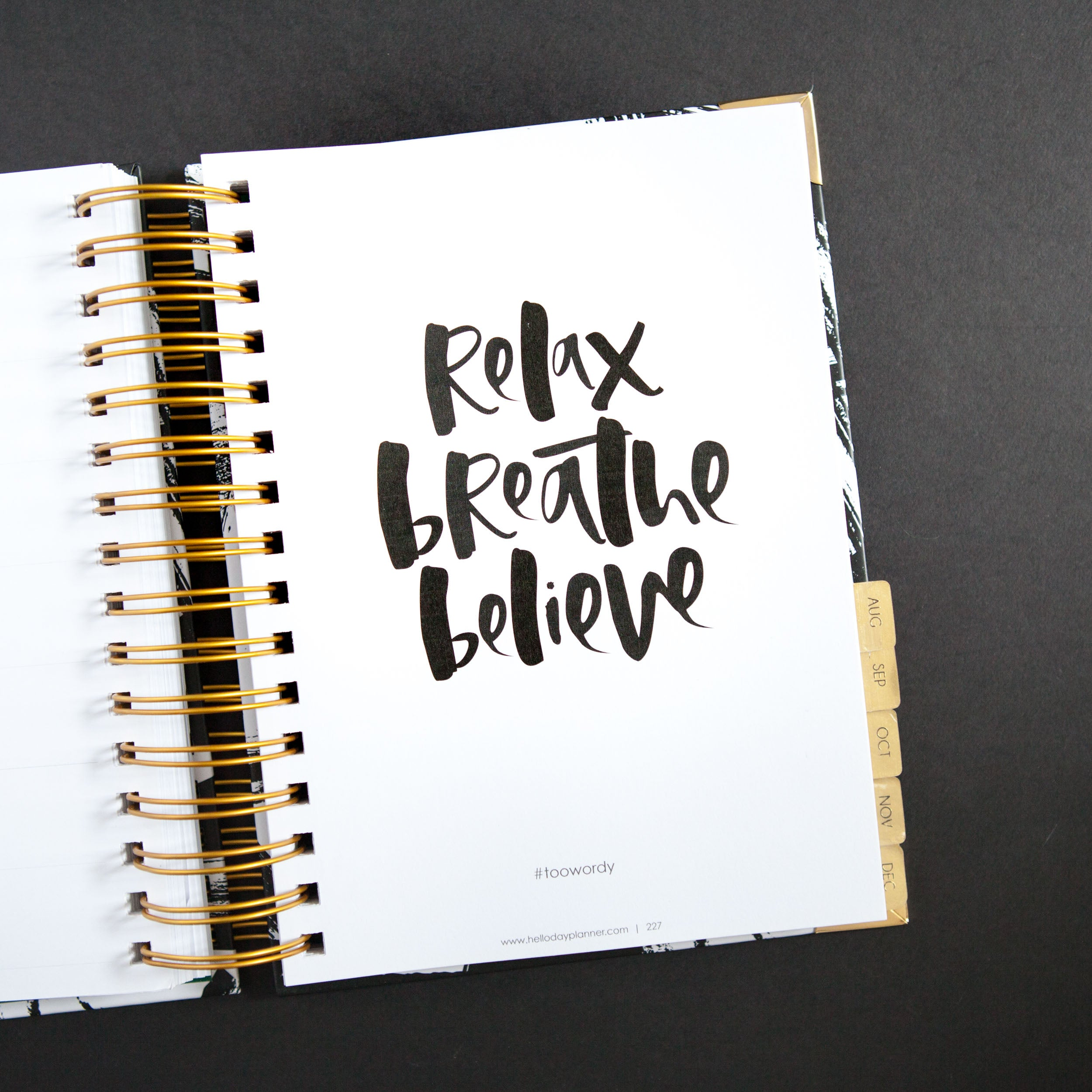 daily planners 2018