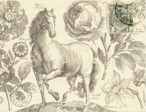 Botanical Equine Decoupage Paper-R
