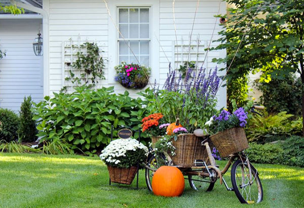 Decorate a Bike For Fall