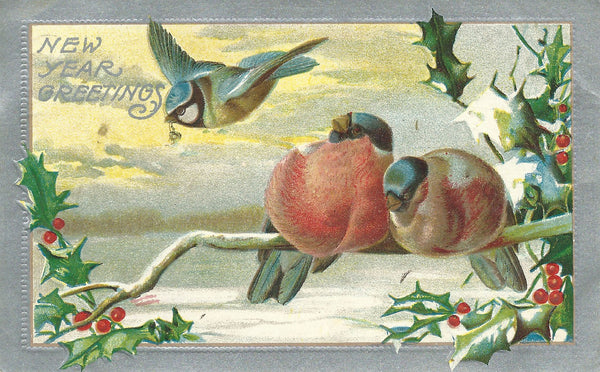 Victorian New Years Postcard with Birds