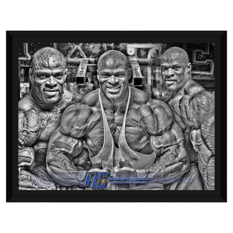 Image of Gooten Apparel & Accessories Framed Art 12x16 inch (1) Ronnie Trifecta Framed Canvas
