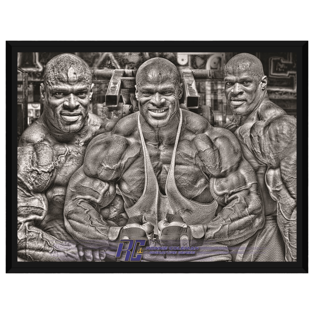 Ronnie Trifecta Framed Canvas
