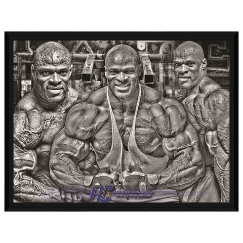 Image of Gooten Apparel & Accessories Framed Art 18x24 inch (1) Ronnie Trifecta Framed Canvas