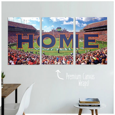 Auburn Premium Canvas Wraps - societyofprints - Society of Prints - Canvas Wrap