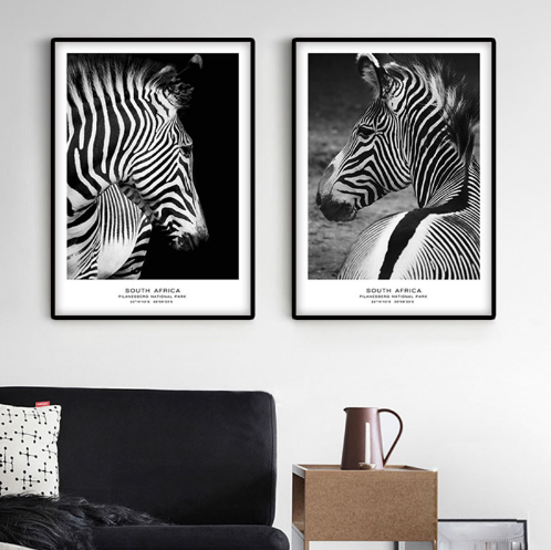 """Black and White Wild"" Canvas spray painting  