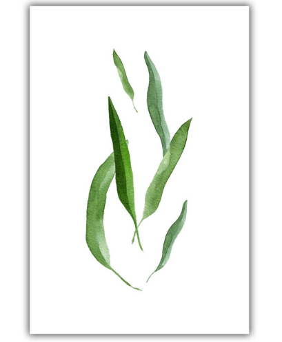 Spring Green Leaf Canvas Wall Art | Octo Treasure
