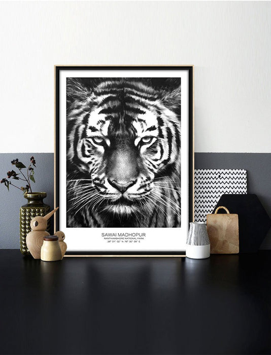 Animal Tiger Black and White Canvas Wall Art | Octo Treasure