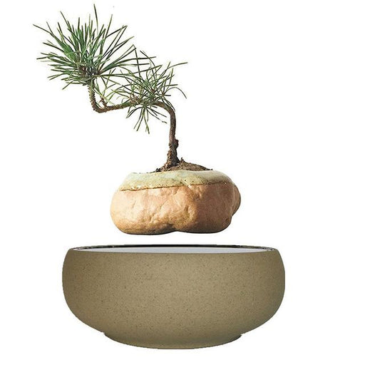 Olodak Magnetic Levitation Floating Plant Decor