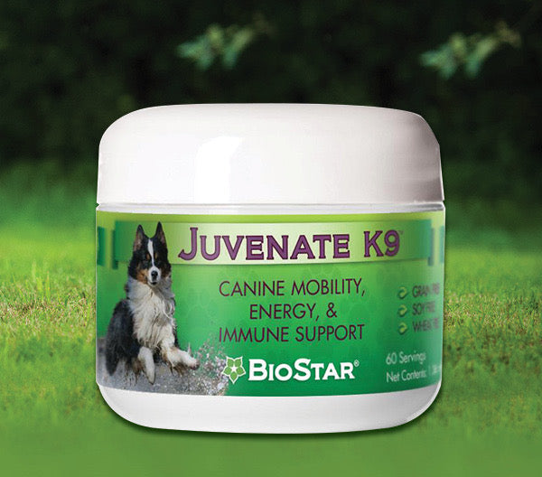 Dogs Naturally Market - Natural Products On Sale!