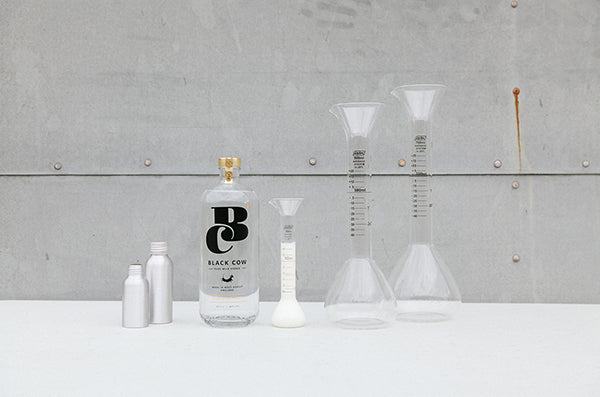 Tracey Neuls Black Cow Vodka