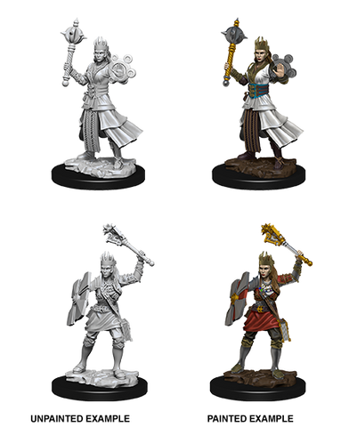 WZK73671: Female Human Cleric: D&D Nolzur's Marvelous Unpainted Miniatures (W8) - pre-order expected May 2019