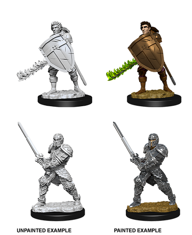 WZK73673: Male Human Fighter: D&D Nolzur's Marvelous Unpainted Miniatures (W8) - pre-order expected May 2019
